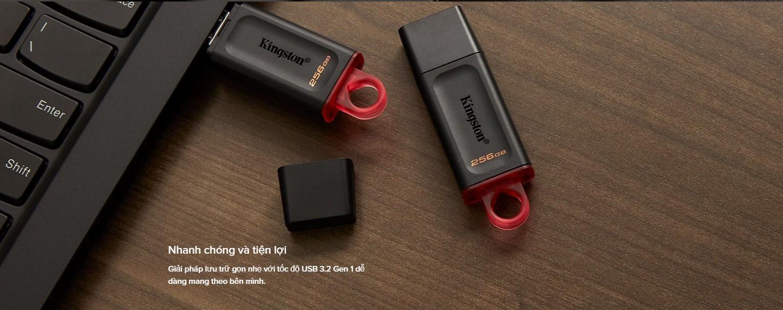 USB Kingston DataTraveler Exodia